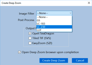 Create Deep Zoom using Filter