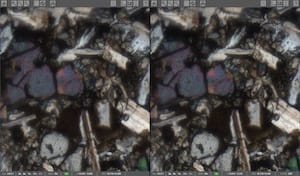 Left Side: Predictive Focus; Right Side: Z-Stack (7 layers)
